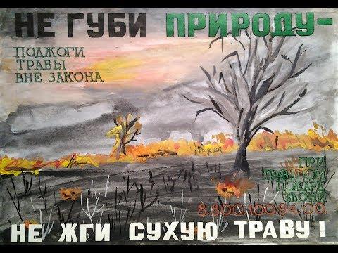 Как нарисовать на тему берегите лес
