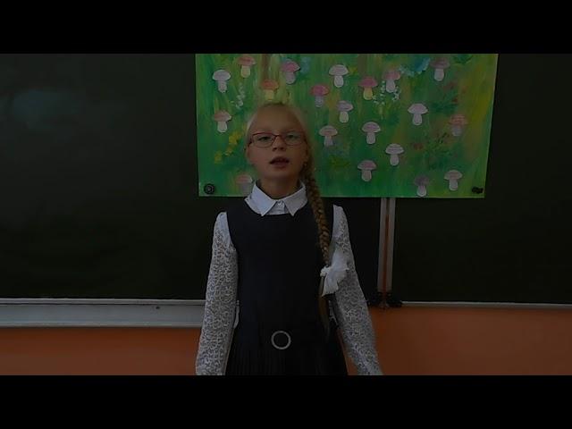 Изображение предпросмотра прочтения – АнастасияМолодцова читает произведение «Здравствуй, лето!» Т.В.Боковой