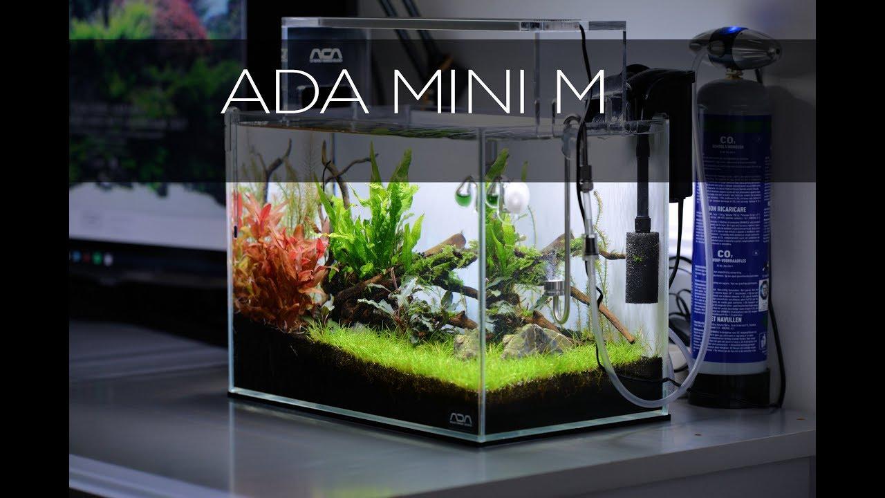 Ada Mini M Aquascape Youtube