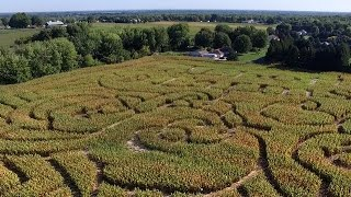 Autumn in NY: Fly over a corn maze near Syracuse
