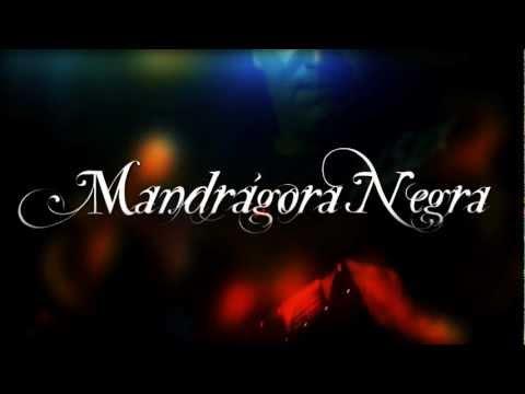 """MANDRAGORA NEGRA """"Sueños de Realidad"""" Tráiler vídeo clip oficial"""