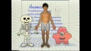 Дет анатомия 1