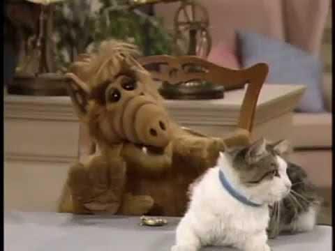Lucky Alf