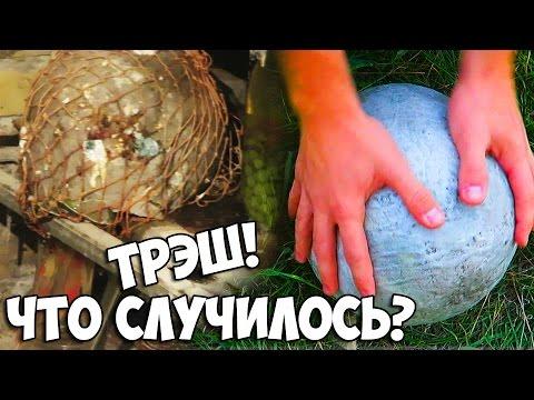 Зачем бросать арбуз в воду? 8 важных вопросов про бахчевые