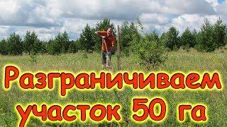 Отмечаем границы на нашем участке 50 га. Сбор клубники. (07.17г.) Семья Бровченко.