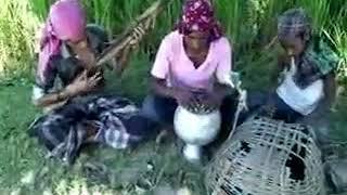 Bengali shayari video