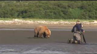 GRIZZLY LAND- New Wildlife Series Trailer, Alaska