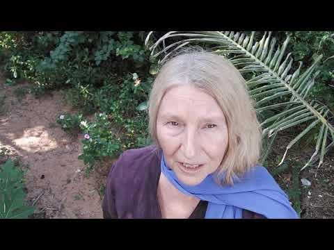 Доктор, работающий в ашраме,  открыл мне тайну иммунитета. Говорит Мария Карпинская