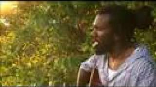 Corey Harris - Honeysuckle