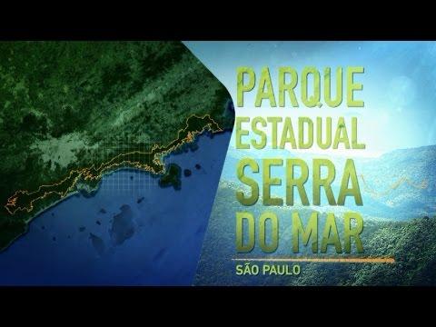 Parques de São Paulo: Serra do Mar