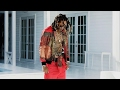 Zoey Dollaz Feat. Future - Stupid AP Video Klibi