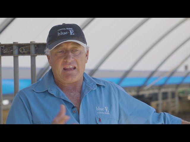 MLA  Beef Industry Sustainability