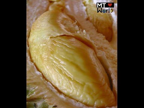 Bao Sheng Durian Farm Tour Best Organic durian on the PLANET!