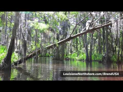 Louisiana's Northshore (Deutsch Sprachversion)