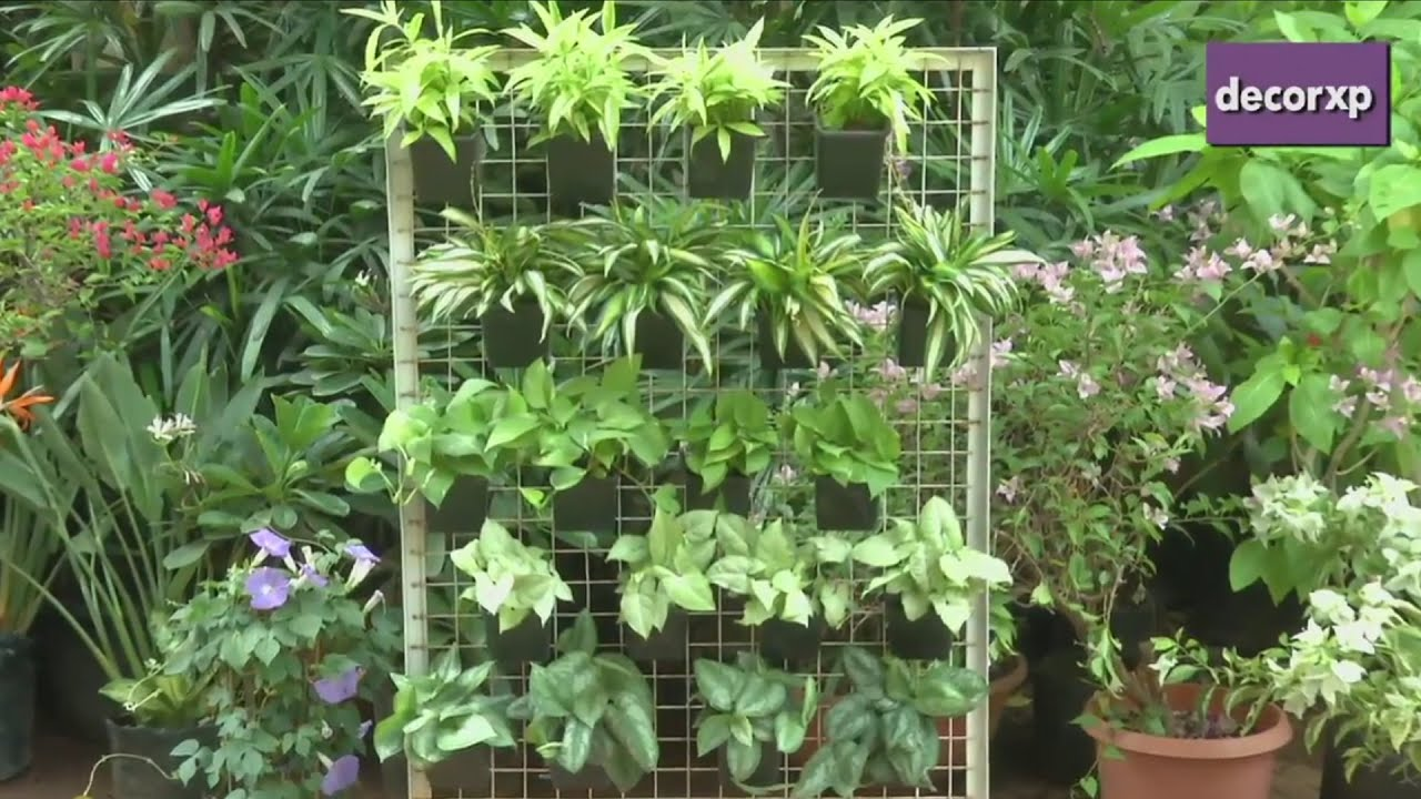 How to make a vertical garden youtube for How to landscape a garden