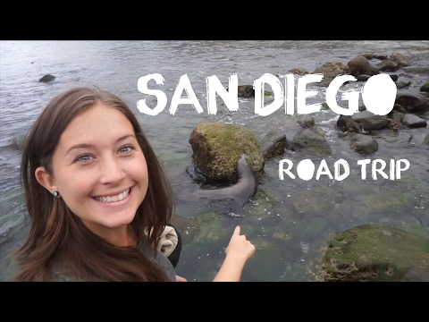 San Diego Road Trip (Hotel del Coronado & La Jolla Seals & Sea Lions) Backpacking Travel Vlog