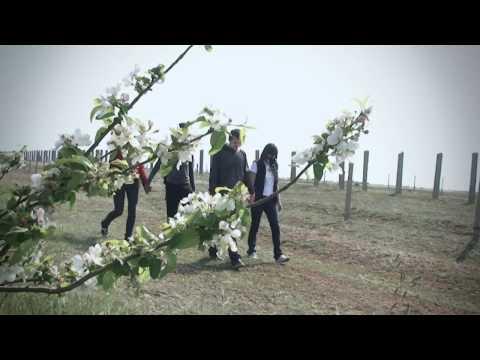 Игорь Саввович (2 серия) (1986) (мини-сериал)