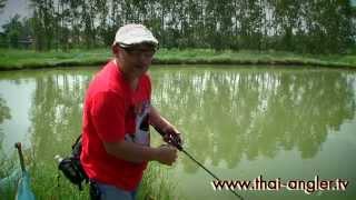 Angler Trip : ตกปลาช่อ�...