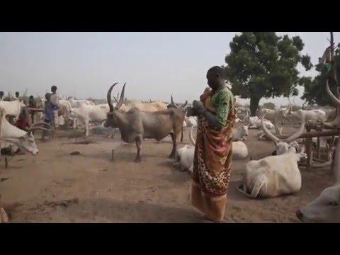 The Remarkable Mundari of South Sudan