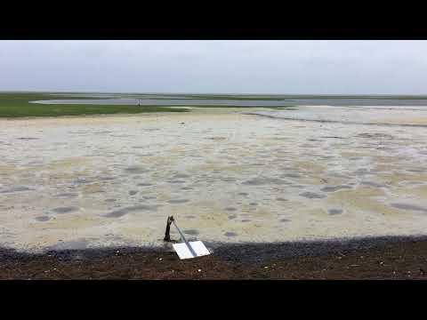 Hurricane Irma St. Petersburg Florida Reverse Storm Surge