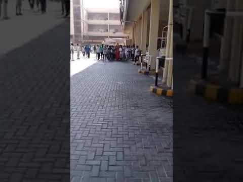 UAE Lahej  &   sultan
