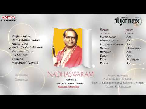 NADHASWARAM || Dr Sheik Chinna Moulana || Classical Instrumental