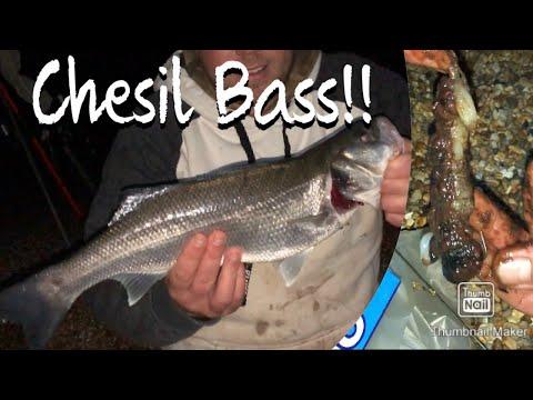 CHESIL BEACH BASS!! Sea Fishing West Bexington On Dorset Coastline At Night.. UK Bait Angling Oct 20
