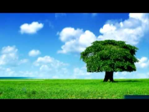 Ekologija za sve - promo spot