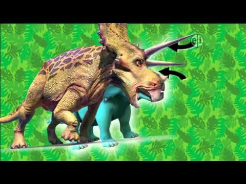 Dinosaur Discoveries Ceratopsians