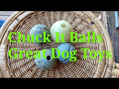 Chuck It Ball Review Great Dog Toys