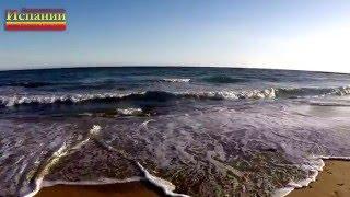 Испания, Коста Бланка, песчаный пляж в Торревьехе, Playa los Locos(Испания, побережье Коста Бланка, песчаный пляж в Торревьехе, Playa los Locos. Красивые песчаные пляжи Испании на..., 2016-01-22T12:42:38.000Z)