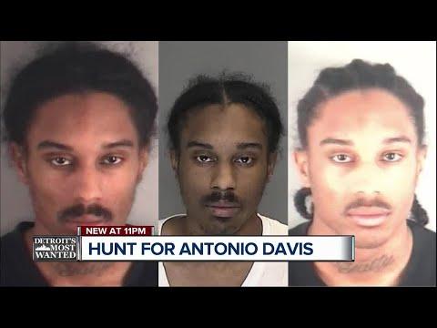 Detroit's Most Wanted: Antonio Davis