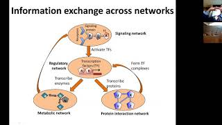MIT CompBio Lecture 11 - Network Analysis