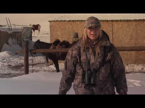 Marco Polo and Mid Asian Ibex Hunt in Krygyzstan with Larysa Unleashed Asian Mountain Outfitters