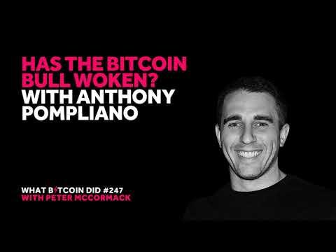 Has the Bitcoin Bull Woken? With Anthony Pompliano