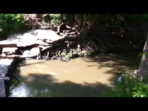 Hickman Nebraska - Monday In The Park