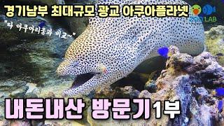 경기남부권 최대 아쿠아리움 광교 아쿠아플라넷 방문기 1…