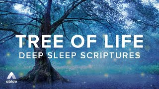 Tree Of Life 🌳 Relaxing Bible Sleep Meditation For Deep Sleep \u0026 Cleansing Christian Mindfulness