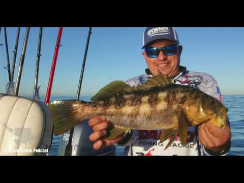 Calico Bass Fishing