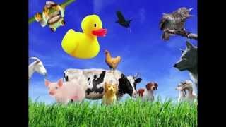 Как говорят животные 2