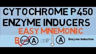 Cytochrome P450 Enzyme Inducers - Easy Mnemonic & Explanation