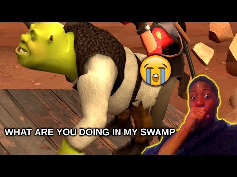 What Are You Doing In My Swamp? REACTION (shrek)