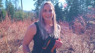 OFF GRID PARADISE  How I grow the BIGGEST blueberries - Pruning &amp Fertilizing