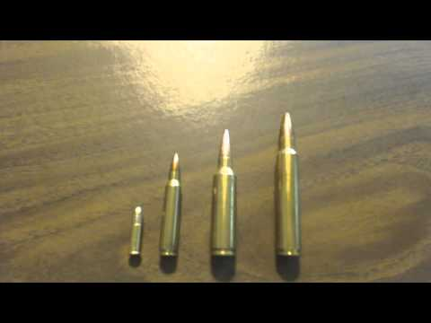 Best Non Dangerous Big Game Hunting Caliber Cartridge The 300's Are Where Its At In My Opinion