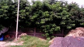 Santushti Estate