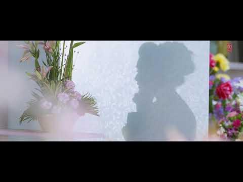 Status Song || Sadi Gali Aaja || Nautanki Sala || Ayushmaan & Pooja || T-series || Ayushmaan & Neeti