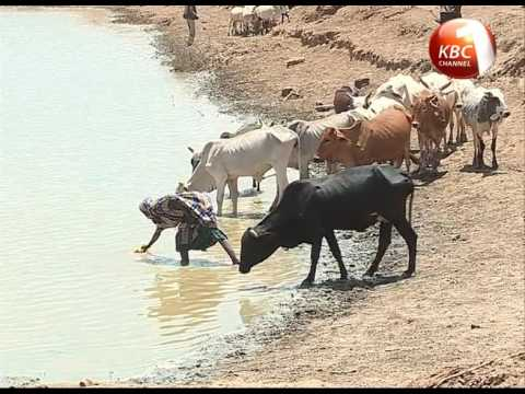 Hydroponic and Aquaculture Technology introduced in Marsabit