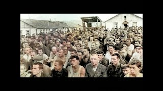40 дней без власти - Легенды Уголовного Розыска