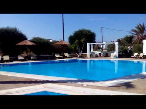 Olga's Hotel pool environment.