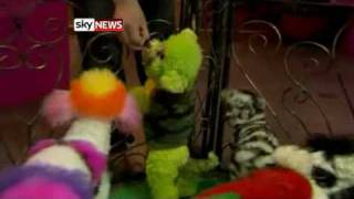 Potty Pet Owners Create Dogs To 'Dye' For from Sky News.flv